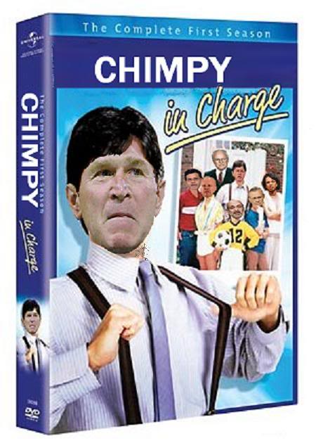 charles-in-charge-chimpy