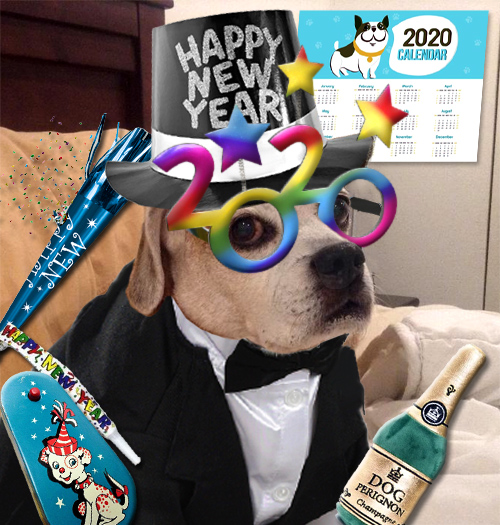 machie new year 2020